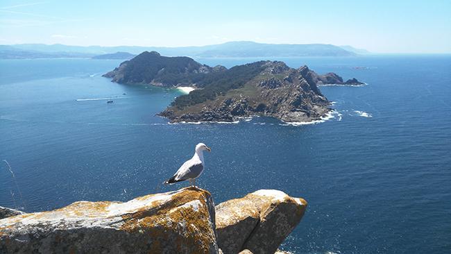 Panorámica de las islas Cíes, integradas en el Parque Nacional de las Islas Atlánticas (foto: Banjo / Wikicommons).