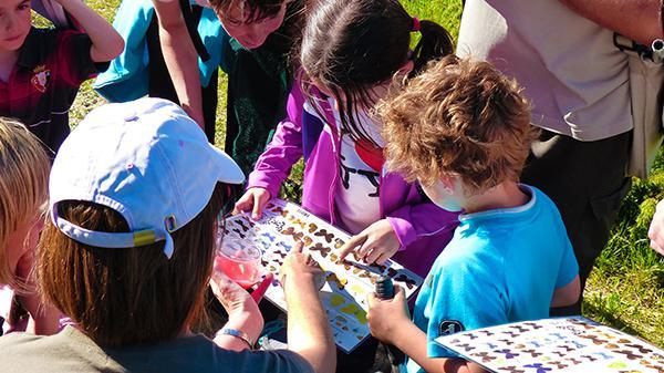 Salida con niños dedicada a las mariposas en Valle de Aranguren (Navarra). Foto: Zerynthia.