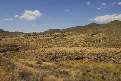 Vista del área protegida por la Red Natura 2000 que pretendía urbanizarse en el caso Zerrichera, en Águilas, Murcia (foto: Pedro García / Anse).