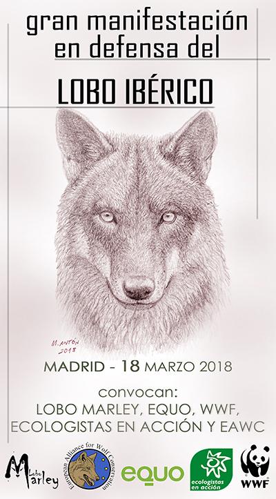18 de marzo: de nuevo a la calle en defensa del lobo ibérico