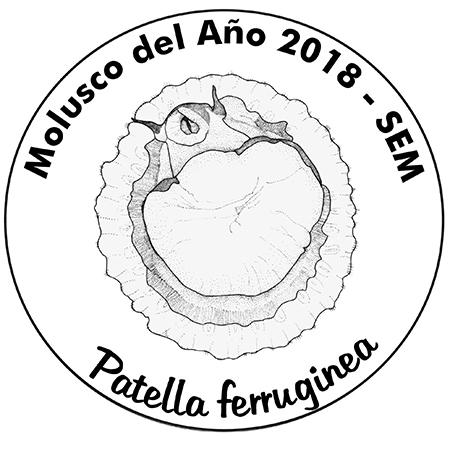 En 2018, el Molusco del Año es la lapa ferrugínea