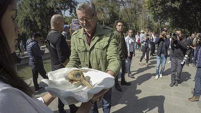 Un hombre recoge el cráneo real de vaquita que fue pasando de mano en mano en la procesión en honor de esta especie celebrada el pasado 17 de febrero en Ciudad de México. El cráneo aparece sobre una reproducción en cerámica de una gran concha marina.