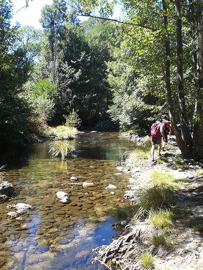 Las reservas naturales fluviales protegen tramos de ríos en excelente estado de conservación (foto: José Antonio Montero).