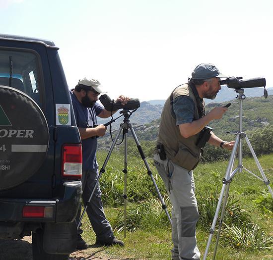 Parte del equipo de estudio durante un censo de rapaces en el interior de Galicia (foto: Luis Tapia).