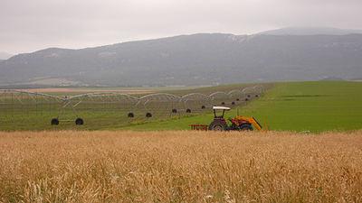 Un tractor faena entre una zona de cereal de secano y un regadío en Castilla-La Mancha (foto: Carmen Arufe / WWF).