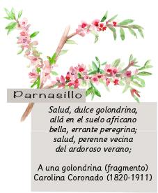 Parnasillo Julio 2018
