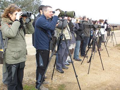 Un grupo de observadores de aves practica su afición en las Vegas del Guadiana (Extremadura). Foto: José Antonio Montero.