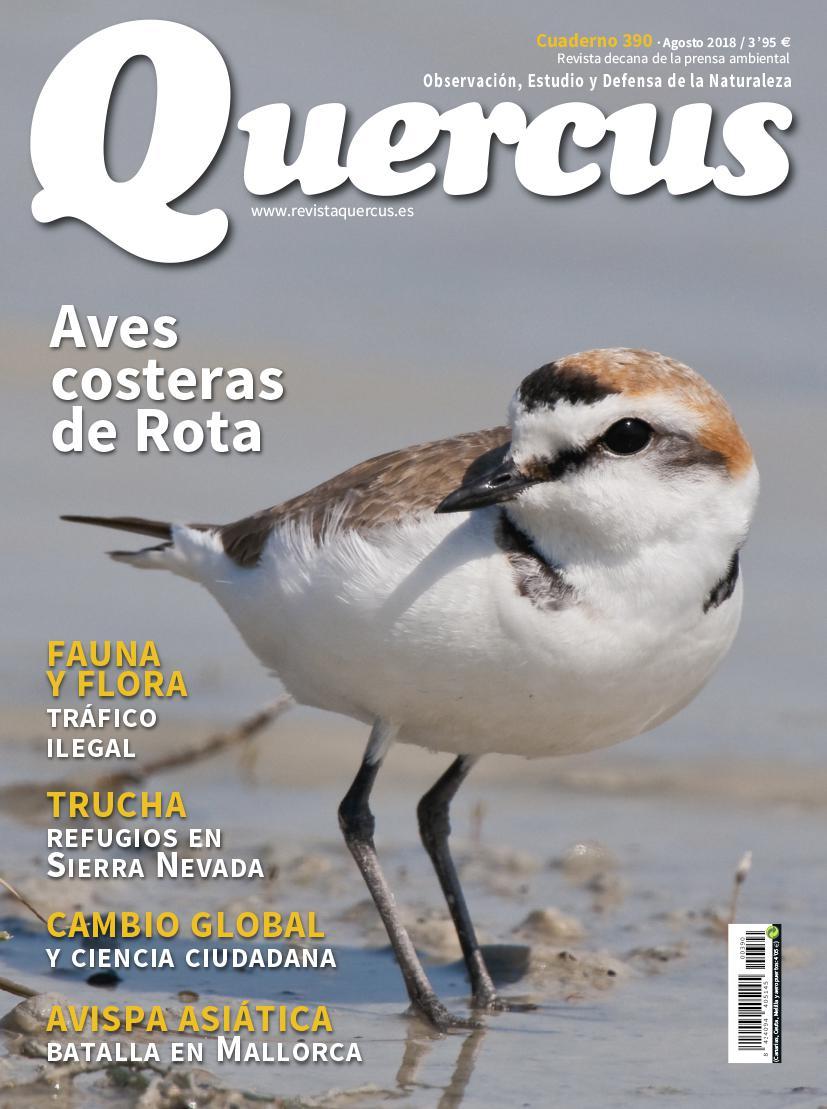 Portada Quercus nº 390 / Agosto 2018