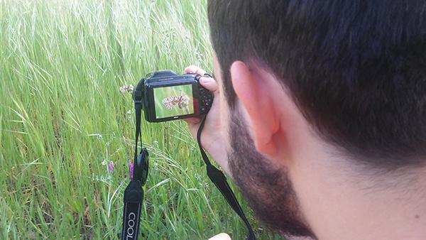 Un participante en un testing de Biodiversidad Virtual fotografía a una mariposa de la especie Zerynthia rumina. (foto: José Pascual).