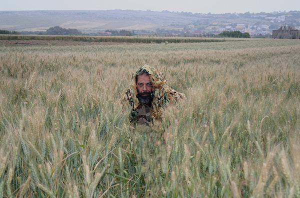 """David González, uno de los integrantes de la """"Operación Torillo"""", en un trigal marroquí en busca de avistamientos o indicios de torillo andaluz (foto: Arturo Valledor de Lozoya)."""