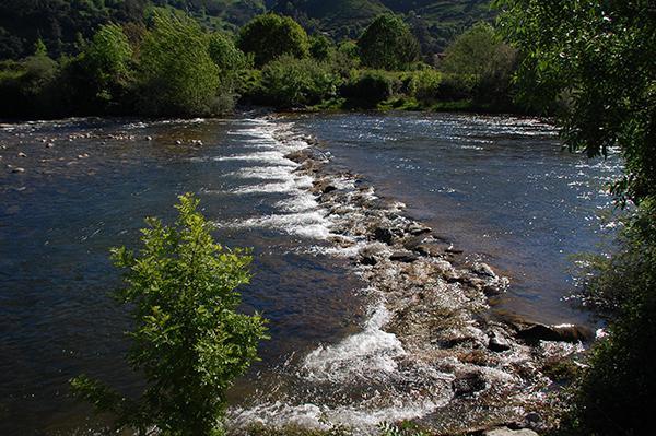 Tramo del río Pas, en Cantabria (foto: SEO/BirdLife).