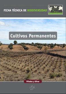 Portada de la ficha técnica dedicada al viñedo y al olivar.