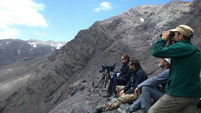 Varios expedicionarios buscan quebrantahuesos desde un punto de observación en el Alto Atlas (Marruecos). Foto: Pedro Antonio Jódar.