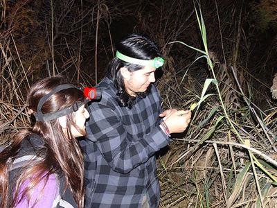 Dos voluntarios observan una ranita meridional en el entorno de un humedal del sur de la provincia de Almería (foto: Emilio González).