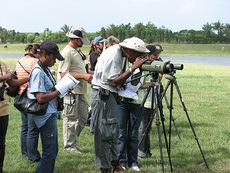 Observadores de aves en la República Dominicana (foto: USFWS).