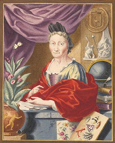 Retrato de Maria Sybilla Merian hacia el año 1700, en su edad madura, a partir de un grabado en cobre de Jacobo Haubraken.