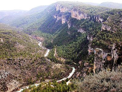 Paisaje en el Parque Natural del Alto Tajo (Guadalajara) con un notable grado de recuperación de la cubierta forestal original, dominada por el pino laricio.