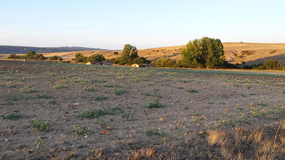 Zona de barbechos en el val le de Amblés (Ávila). Foto: Xemenendura / Wikicommons.