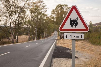 Una señal de tráfico advierte de la presencia de lince ibérico en una carretera de Portugal (foto: Mauro Rodrigues / Shutterstock).
