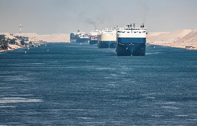 Los moluscos que nos llegan a través del Canal de Suez