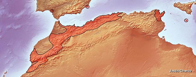 Área de distribución mundial del ciprés de Cartagena. Mapa: Jesús Charco.