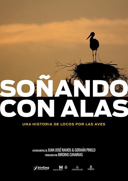 Cartel de la película Soñando con alas.
