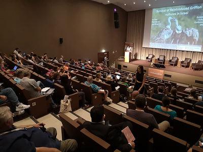 Ponencia sobre los buitres de Israel durante el congreso celebrado en Albufeira (Portugal). Foto: Jordi Muntaner.