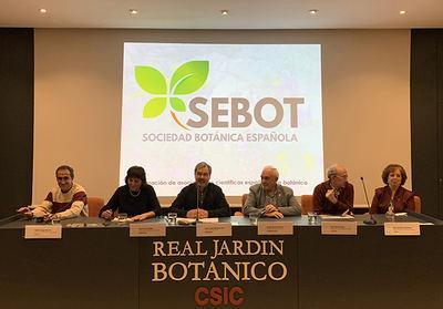 La primera junta directiva de la SEBOT, durante la presentación de la entidad el pasado 29 de noviembre (foto: RJB).