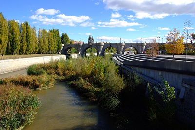 Aspecto del Manzanares a su paso por Madrid capital, aguas arriba del Puente de Toledo, más de dos años después (noviembre de 2018) del inicio del plan de renaturalización del río (foto: Rafael Ruiz).
