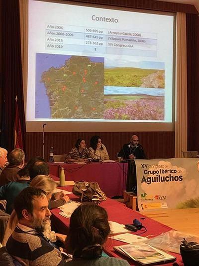 Los ponentes de uno de los trabajos presentados al XV Congreso del Grupo Ibérico de Aguiluchos se dirigen a los asistentes (foto: GIA).
