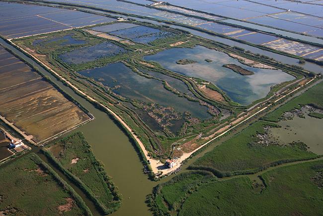 Vista aérea del Tancat de la Pipa, en la orilla norte de la laguna de la Albufera (foto: Servei Devesa-Albufera / Ajuntament de València).