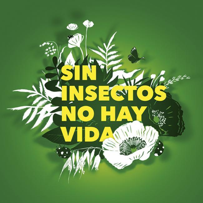 Entomólogos y ecologistas, unidos a favor de los insectos