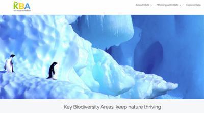 Cabecera de la página inicial de la web de las KBA.