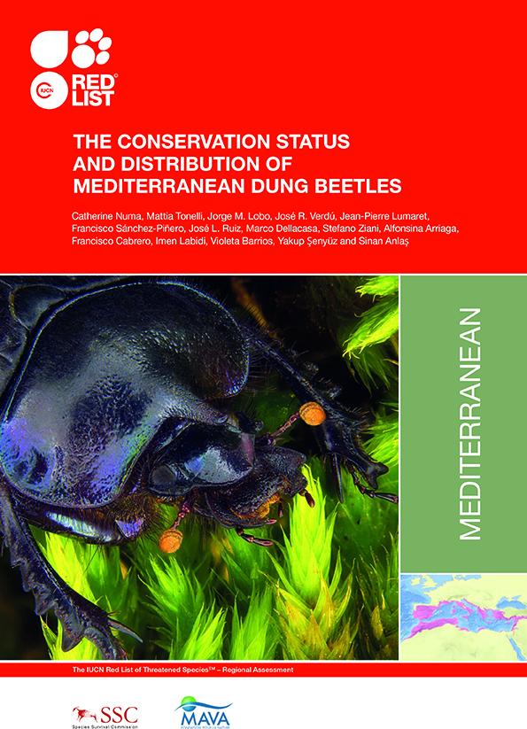 Informe UICN: son malos tiempos para los escarabajos peloteros
