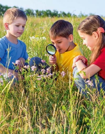 Varios niños observan las flores de una planta (foto: sbworld8 / 123rf).