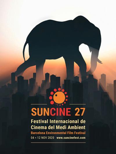 Suncine, el arte de contar historias