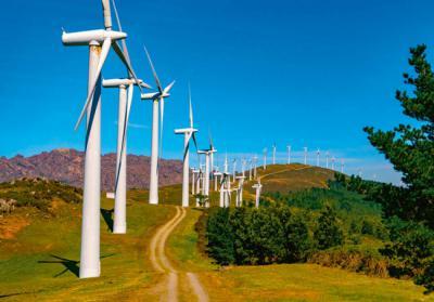 Aliente: la ciudadanía se une ante el impacto de las renovables en la naturaleza