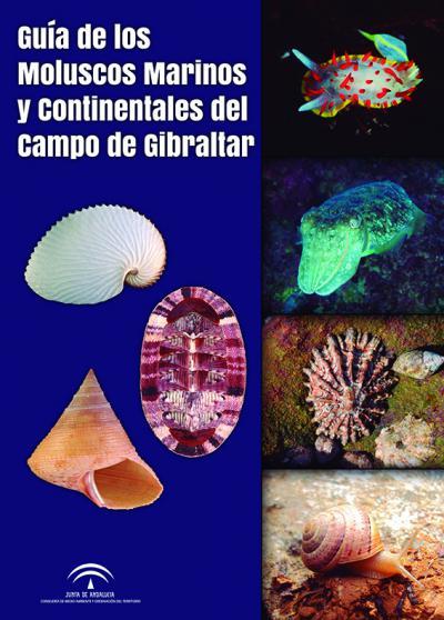 De interés para los aficionados a los moluscos