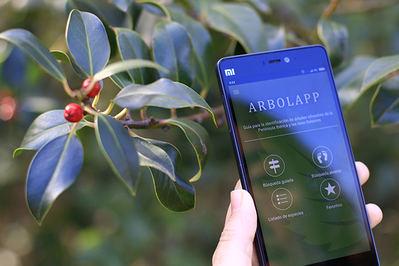 Un usuario utiliza la aplicación Arbolapp.