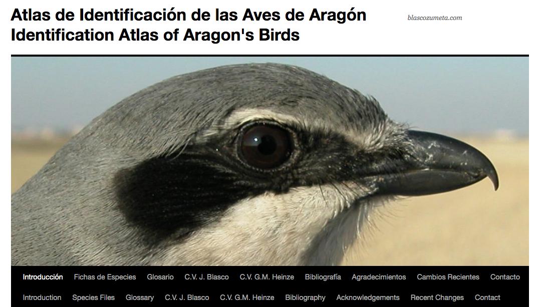 Un atlas fotográfico de aves que hay que conocer