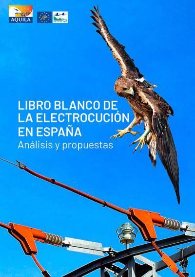 Un Libro Blanco sobre el grave problema de la electrocución de aves