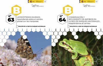 Mariposas y anfibios, en el boletín de los parques nacionales