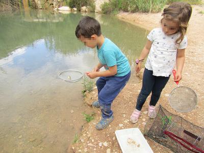 Los más pequeños también participaron en el bioblitz celebrado en mayo de 2019 para inventariar la biodiversidad de la Reserva Natural Fluvial del río Chícamo, en la Región de Murcia