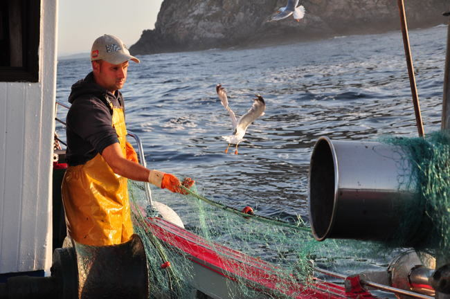 Actividad pesquera en las aguas del Parque Nacional Illas Atlánticas de Galicia, durante uno de los embarques de los observadores del proyecto Virada (foto: Cemma).