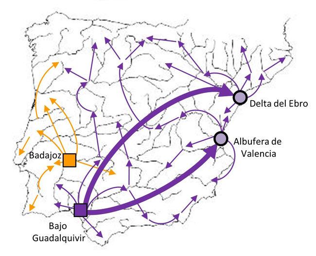Mapa de la expansión del cangrejo rojo en la Península Ibérica.