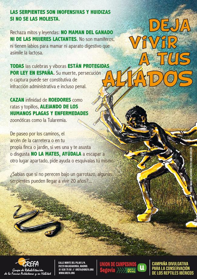 Cartel de la campaña, ilustrado por Iraide Villaescusa.