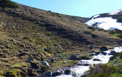 """Nacederos de arroyos en una zona del Parque Nacional de la Sierra de Guadarrama que se verá afectada por el """"Cross de los Tres Refugios"""" (foto: RedMontañas)."""