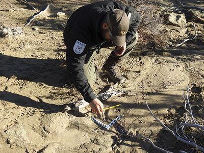Fernando Gómez toma medidas de un rastro de lince rojo en la Reserva Jicarilla Apache (Nuevo México, Estados Unidos). Foto: Elridge Vigil.