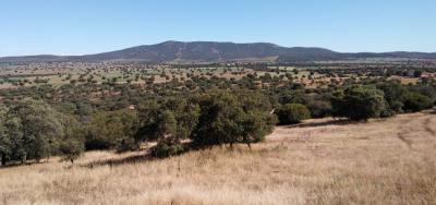La justicia tumba un proyecto minero en el Campo de Montiel