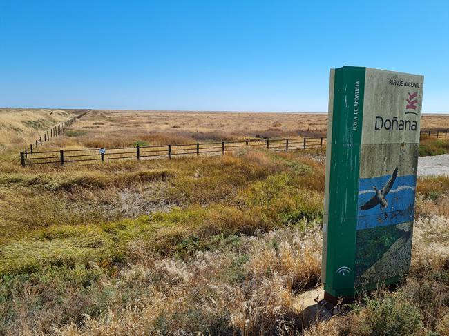 Estado de la marisma norte de Doñana (finca Los Caracoles), totalmente seca a finales de la pasada primavera (foto: WWF España).